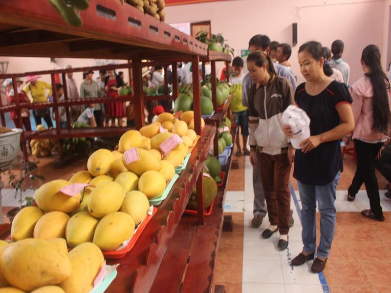 Mất mùa vì hạn mặn, Bến Tre không tổ chức lễ hội cây trái ngon - ảnh 2