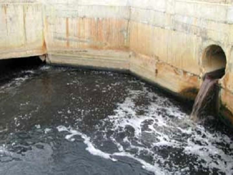 Bến Tre: Gây ô nhiễm môi trường, 1 công ty bị phạt 130 triệu - ảnh 1
