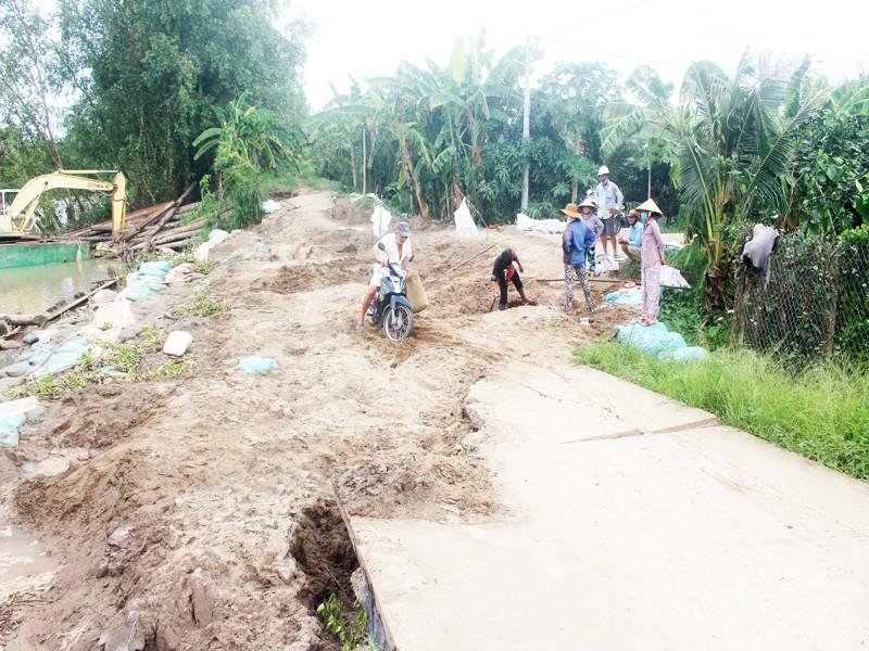 Tháo dỡ đập tạm sông Ba Lai gây sạt lở 150m lộ và đê bao - ảnh 1