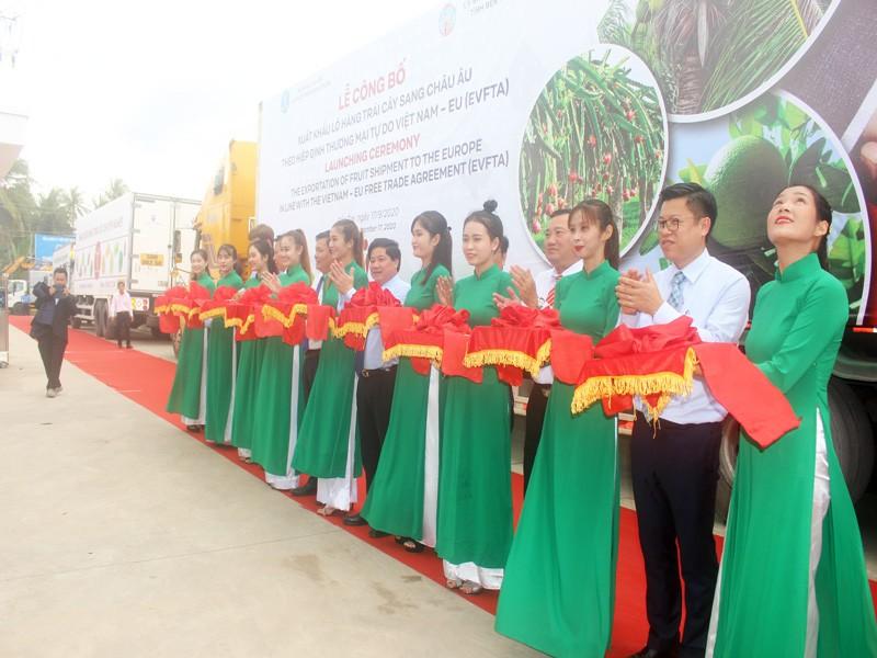 Dừa, bưởi, thanh long Việt Nam 'lên đường' sang châu Âu - ảnh 3