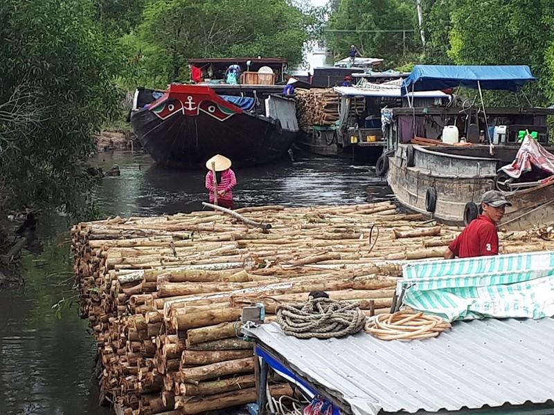 Nông dân ngăn ghe chở gỗ vì làm đục nước sông - ảnh 2