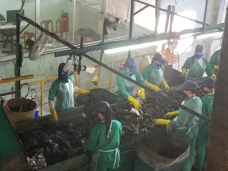 Chủ nhà máy rác Cà Mau đòi đóng cửa vì bị nợ hơn 33 tỉ đồng - ảnh 1